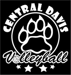 cdvolleyball